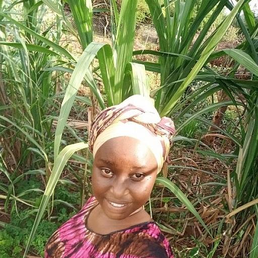 Melisa Hope Profile Picture